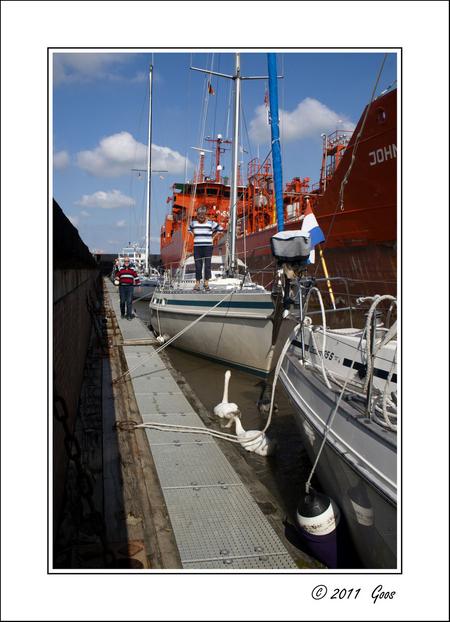 Laatste van de boot - Gisteren bij de notaris de boot overgedragen aan de nieuwe eigenaars, een jong Amsterdams stel die wij hem graag gunnen: lekker enthousiast en de boo - foto door goosveenendaal op 27-07-2012 - deze foto bevat: boot, zwanen, sluis