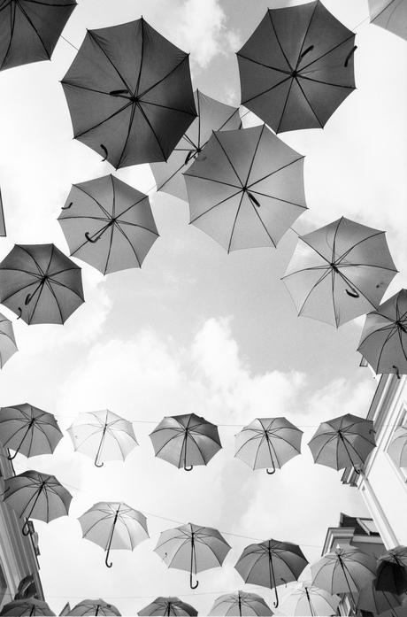 Paraplu in zwart wit