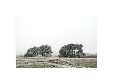 A Hazy Winter Wonderland - VI