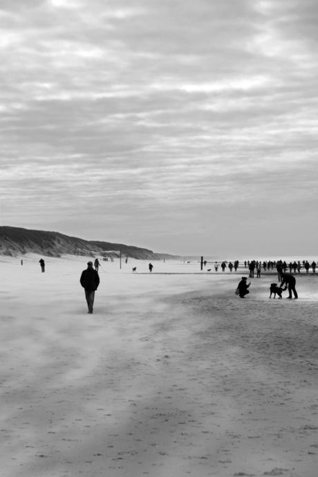 Windy beach...