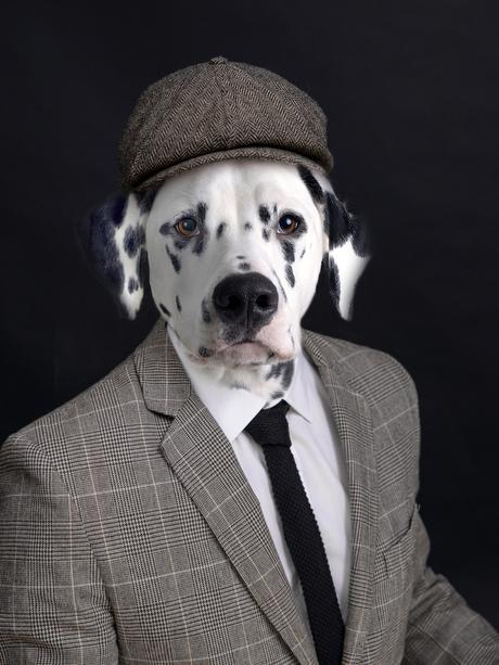 Man met een hondengezicht of een hond met mannenkleren ?