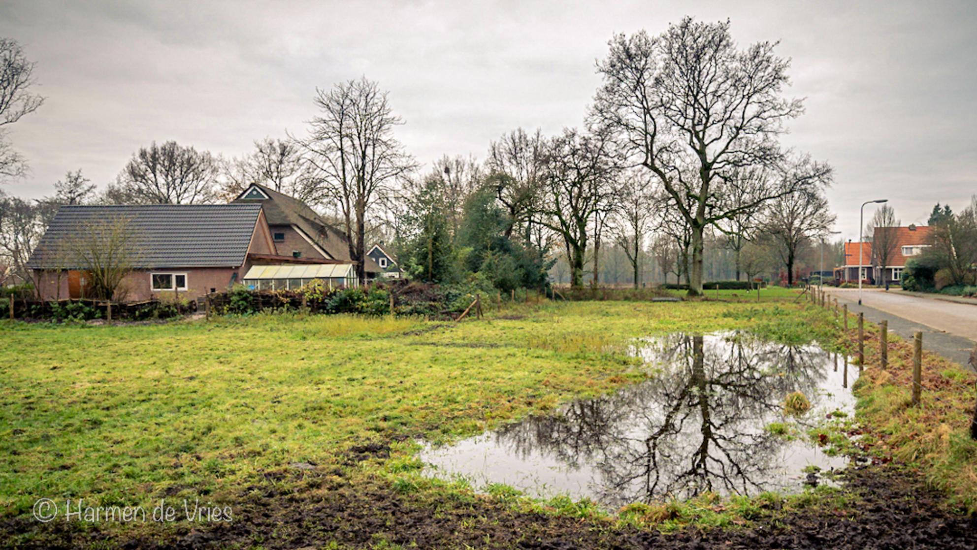 Na regen zijn er plassen - Normaal een droog weiland, sinds deze regenachtige dagen groiet er een steeds groter wordende plas in het weiland. - foto door hjdevries op 08-12-2020 - deze foto bevat: lucht, boom, water, natuur, regen, herfst, landschap, drenthe, nederland, weerspiegeling, assen, plas - Deze foto mag gebruikt worden in een Zoom.nl publicatie