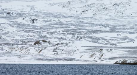 Murchisonfjord Spitsbergen
