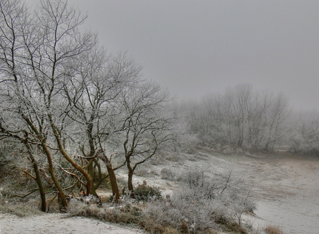 Winters Duinlandschap