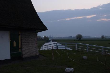 Dijkmolen in Maasland