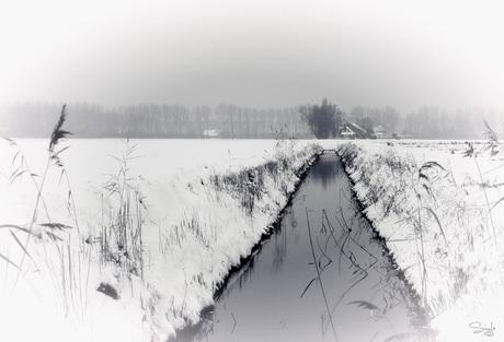 Witte winter wereld.2