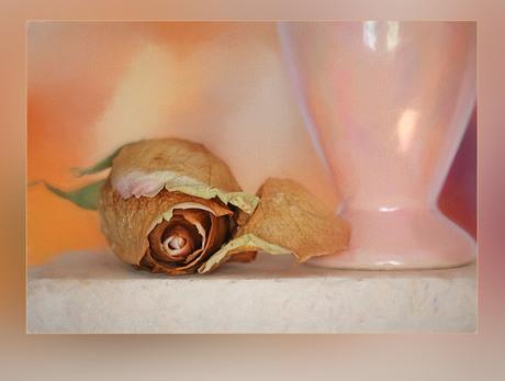 vergane glorie naast de vaas.....................