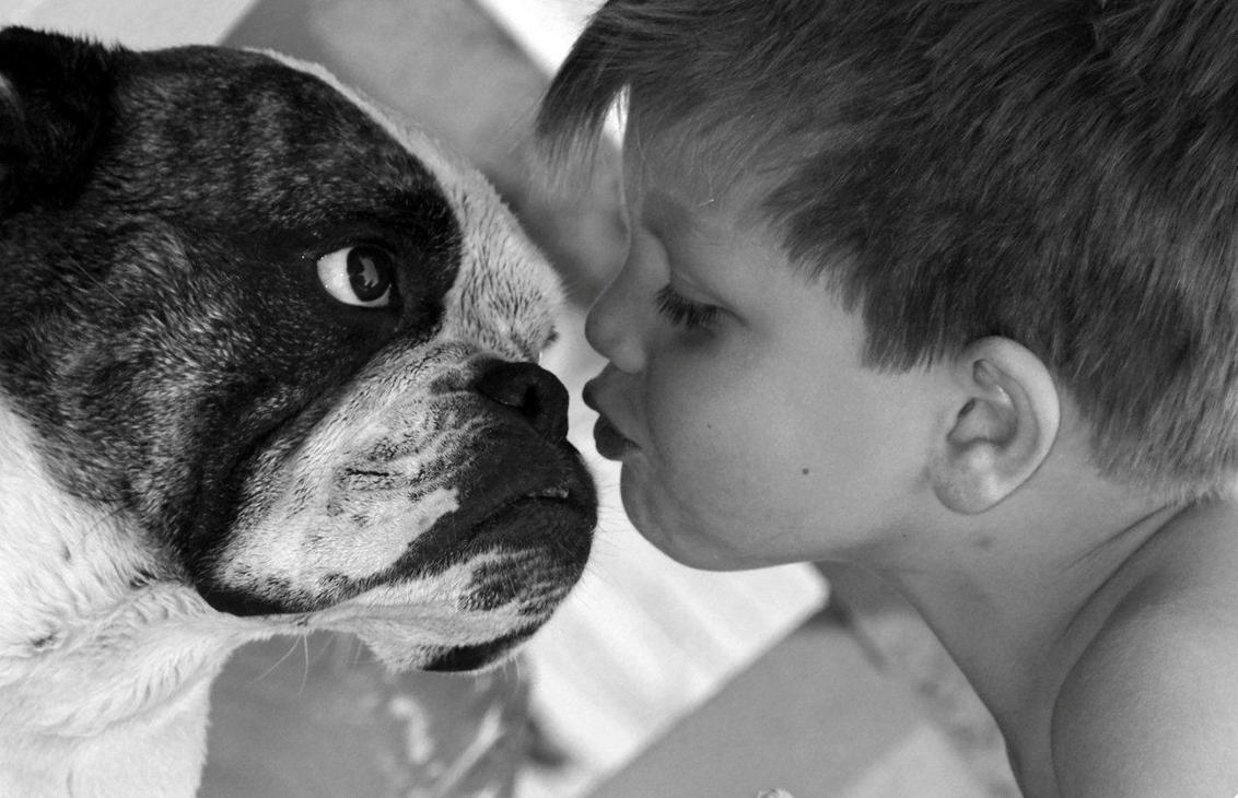 dikke kussen - hallo,deze foto is genomen op vakantie,en de hond van mijn zus krijgt een dikke kus van mijn zoontje. - foto door danny kozze op 29-07-2012 - deze foto bevat: hond