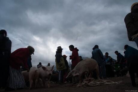 equador veemarkt