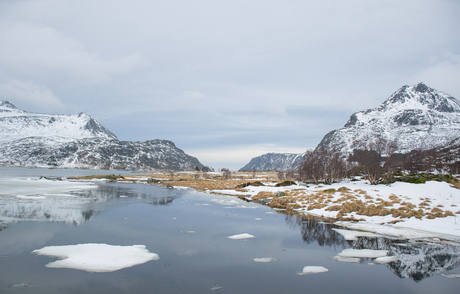 Lofoten in de winter