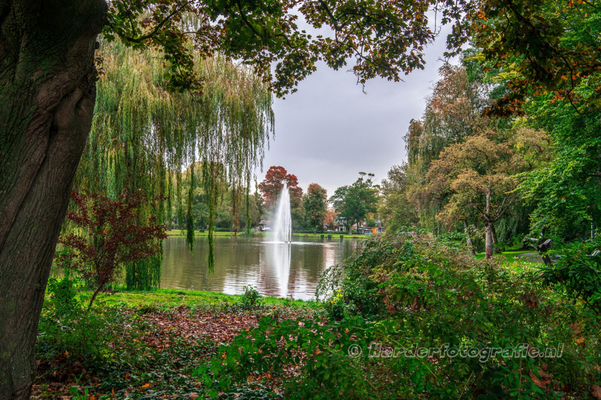 Doorkijkje in het Wilhelminapark - Doorkijkje in het Wilhelminapark te Meppel. De herfstkleuren geven sfeer aan de plaat. - foto door deharder op 13-10-2019 - deze foto bevat: boom, park, herfst, blad, doorkijk, meppel, deharder