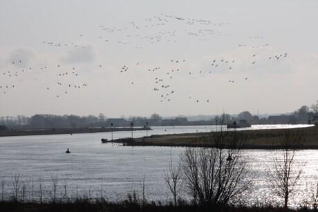 IJssel, slingerend door het landschap