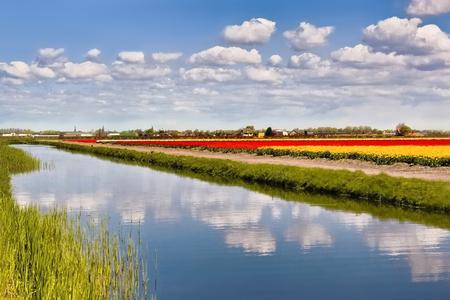 Lovely colours - Heerlijke lentedag - foto door JokeHulst op 09-05-2013 - deze foto bevat: kleuren, water, lente, reflectie, landschap