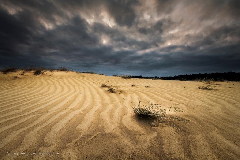 Dutch desert - Kootwijkerzand.......een prachtig groots gebied en de grootste zandverstuiving van Europa. Een genot om daar te lopen en vast te leggen. Vooral als - foto door Jant op 27-07-2015 - deze foto bevat: lucht, wolken, natuur, licht, avond, dreiging, zonsondergang, landschap, duinen, bomen, kootwijkerzand, zand, zandverstuiving, JanT