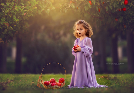 Nothing beats the sensation of picking the first apple of the season.