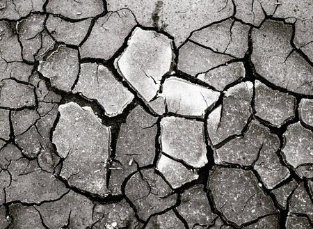 Droogte! - De droge grond, snakkend naar water!! - foto door stitch626 op 15-04-2021 - locatie: Arnhem Zuid, Arnhem, Nederland - deze foto bevat: zwart-wit, abstract, natuur, weg oppervlak, bouwmateriaal, patroon, tinten en schakeringen, evenement, detailopname, bodem, droogte, geplaveide, ontwerp