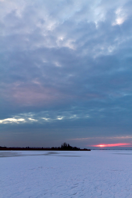 Oostvaardersplassen - Hier kreeg ik het gevoel in het poolgebied te zijn, een mooie dag maar erg koud! - foto door Maragmar op 16-02-2012 - deze foto bevat: natuur, sneeuw, winter, zonsondergang, ijs, holland, stilte, oostvaardersplassen, bevroren, plas, poollicht, avondschemer