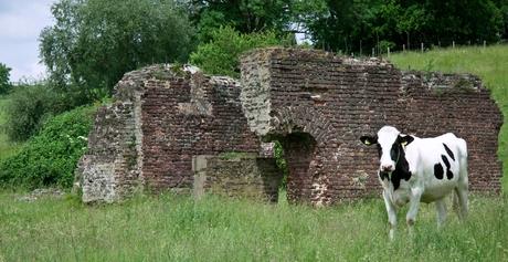 Ruine Vijlen