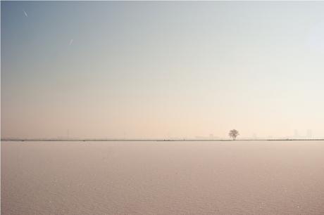 winter aan de Rotte