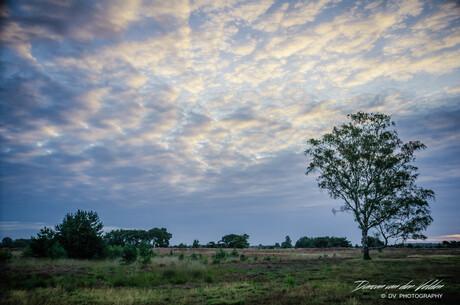 Blauw uurtje op de Strabrechtse Heide