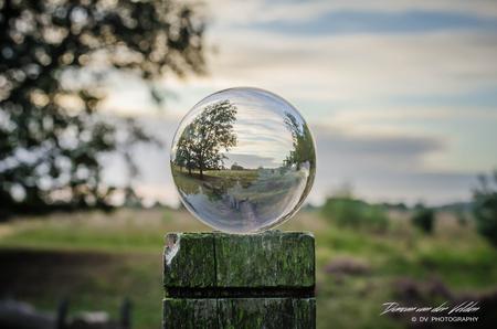 Glazen bol - Glazen bol op de Strabrechtse Heide. De bol is in Photoshop omgedraaid. - foto door Baelian op 05-09-2019 - deze foto bevat: Strabrechtse heide