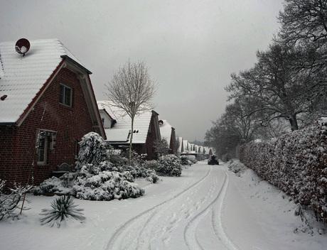 Winter in Burlo