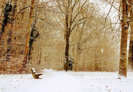 Winters landschap!