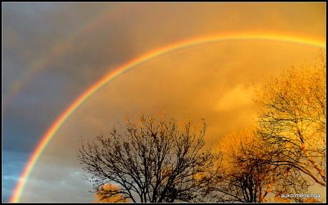 regenboogpracht