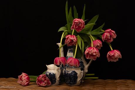 Tulpenstilleven