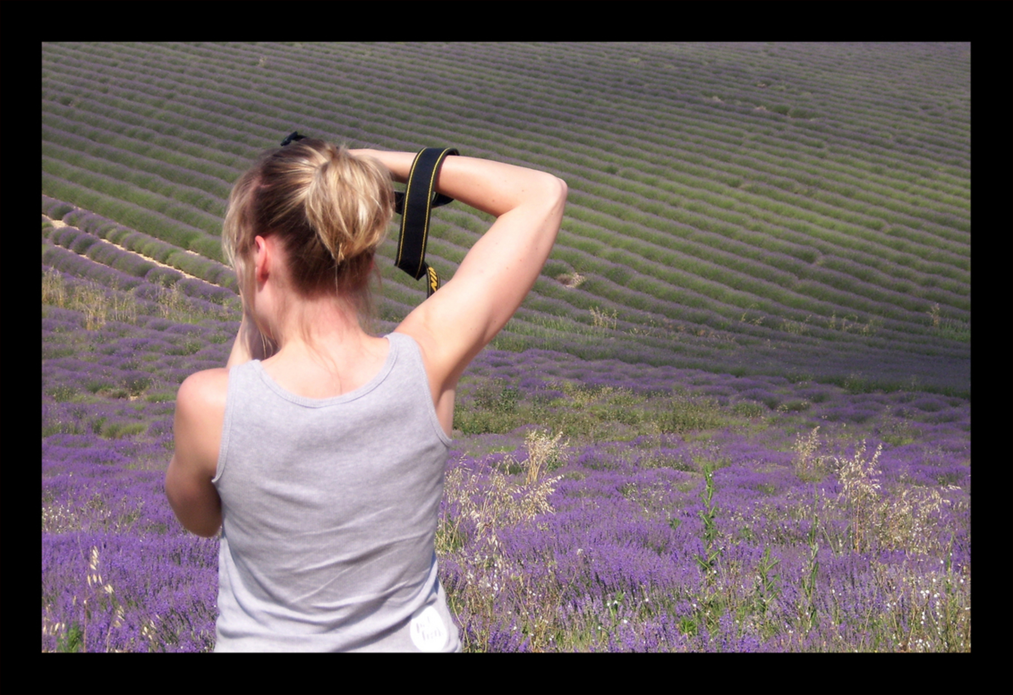 In het paars - - - foto door Ciska op 30-08-2009 - deze foto bevat: nikon, lavendelvelden