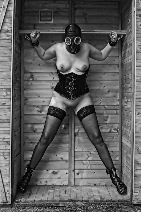 De vrouw in de kast