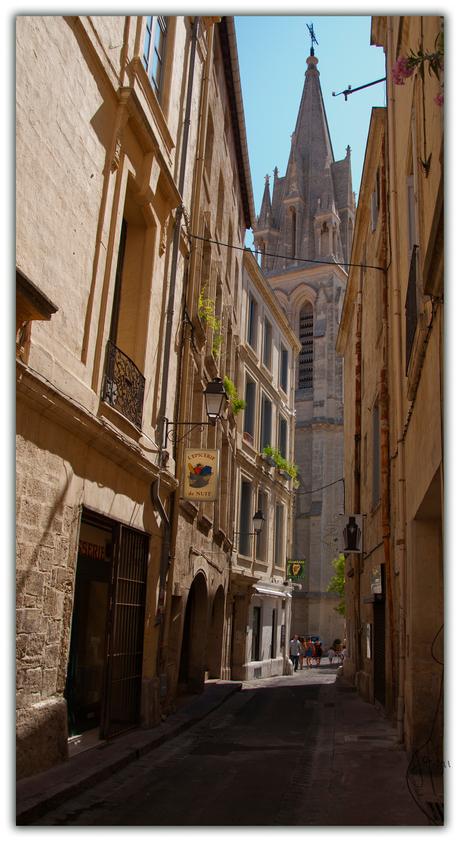 Montpellier - 3