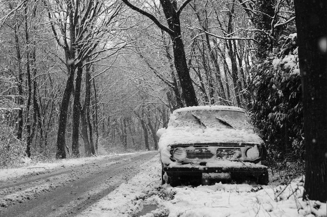 winter - winter - foto door rakus op 05-02-2015 - deze foto bevat: sneeuw, winter