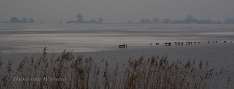Een grijze dag in Friesland