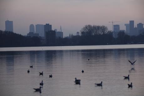 Prachtige zonsondergang in Rotterdam!