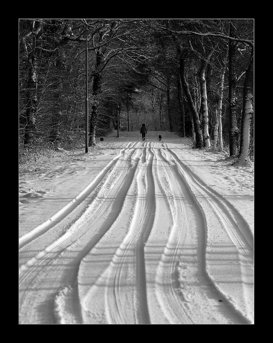 Sporen in de sneeuw2 - Afgelopen zondag in Havelte (Drenthe) 's ochtends even de camera gepakt en mijn schoonmoeder ontvlucht ;-) Er was verse sneeuw gevallen. De autospore - foto door juriheise op 01-02-2010 - deze foto bevat: sneeuw, winter, sporen, havelte