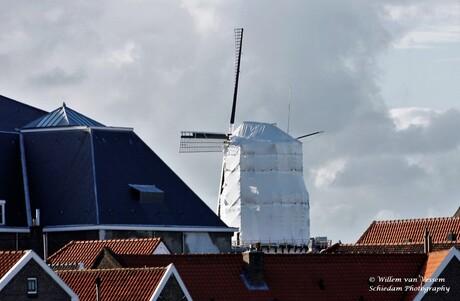Schiedamse molen de Walvisch ingepakt