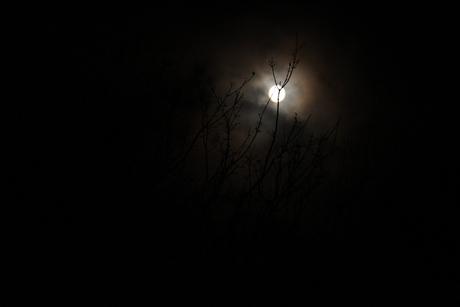 Zeewolde by night!