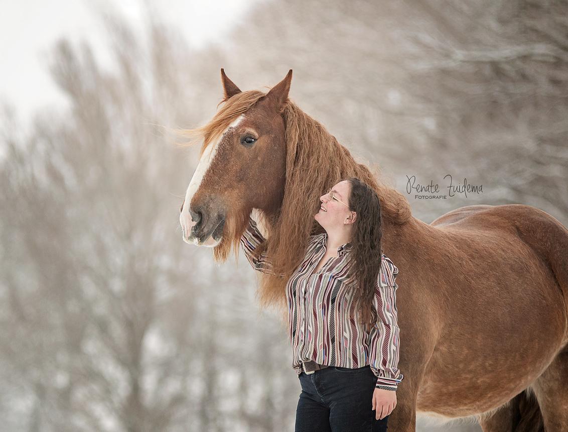 Chendo & Sanne - Zo mooi om de liefde tussen mens & dier vast te leggen! - foto door RenateZuidemaFotografie op 31-01-2021 - deze foto bevat: sneeuw, paard, liefde, band, mens, snow, horse, tinker, shire