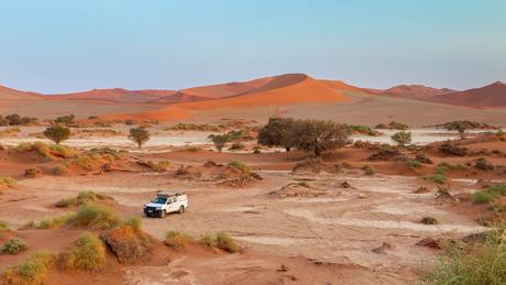 Alleen in de woestijn