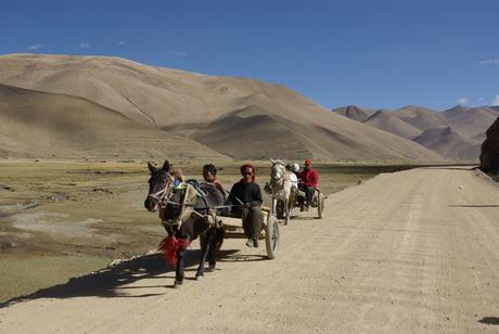 Tibet, Jak familie