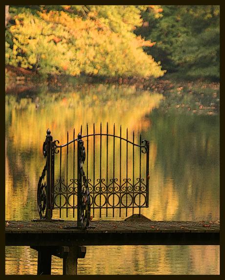 gouden herfst ...