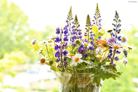 DSC_5370 Wilde bloemen.