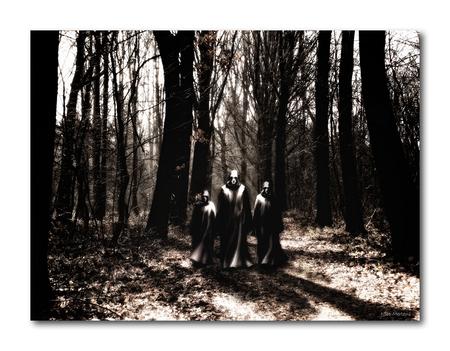 Mystic Forest2!! - Hallo... hier het 2de deel van de Mystic forest reeks... ook hier is de foto van het bos van mezelf, en de figuren heb ik gebruikt van stockfoto's. - foto door smeagol op 16-05-2010 - deze foto bevat: bos, geest, s5, smeagol, mystic forest