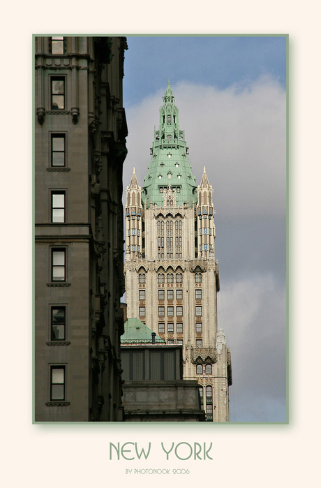 The Woolworth Building - New York