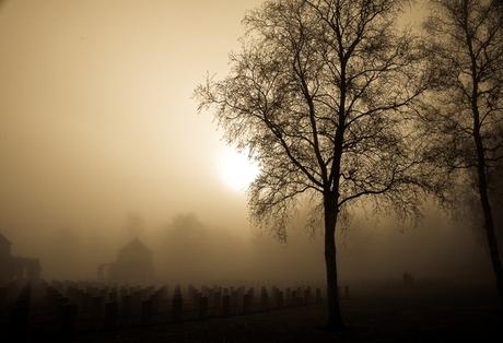 Canadese begraafplaats - Holten