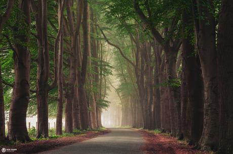 Spotless road