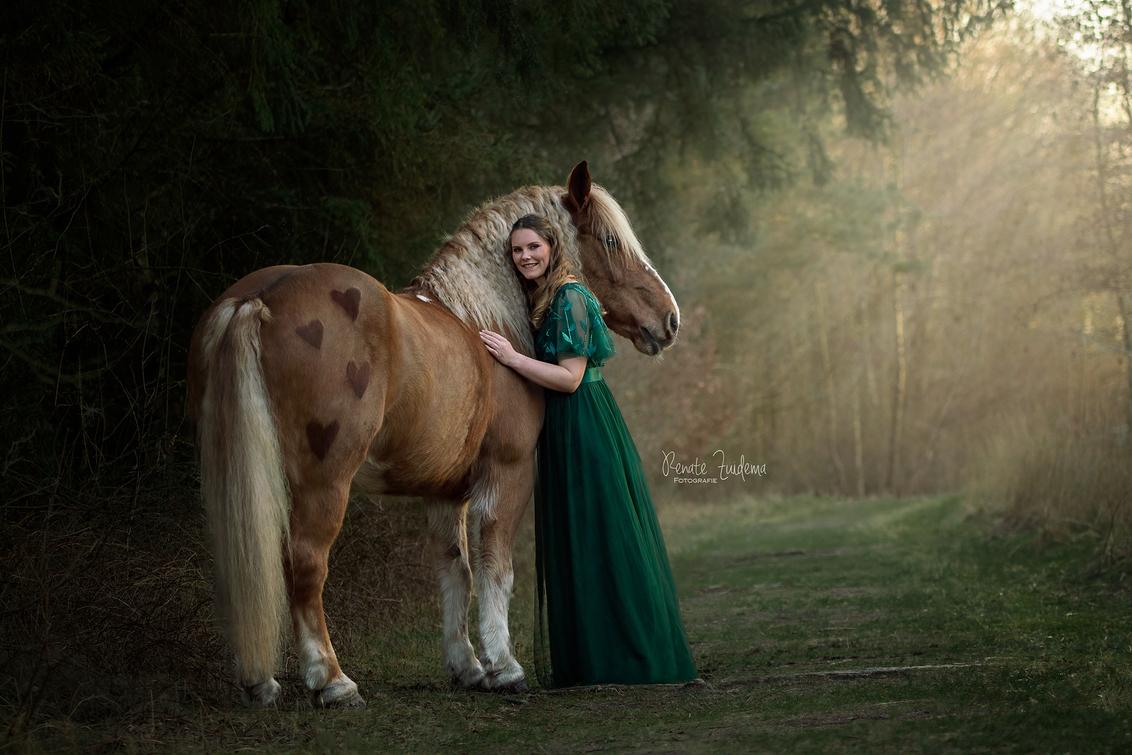 Forest Fairytail - Net een sprookje in een prachtig bos. - foto door RenateZuidemaFotografie op 24-02-2021 - deze foto bevat: paarden, paard, bos, horses, sprookje, forest, horse, magisch, magical, fairytail, schwarzwälder fuch