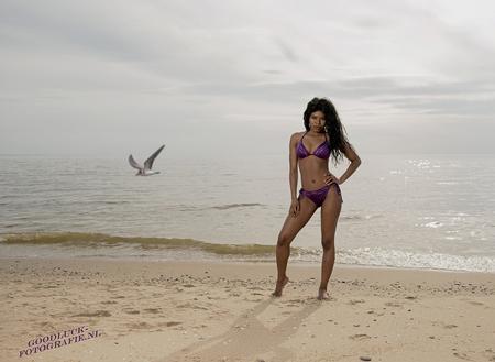 Paarse bikini - Model Wendy tijdens de strandshoot.  En soms helpt een meeuw de foto nog mooier te maken.  [url=http://www.goodluck-fotografie.nl/]goodluck-fotogr - foto door goodluck op 18-05-2017 - deze foto bevat: kleur, natuur, portret, model, tegenlicht, flits, stoer, haar, fashion, beauty, schoenen, sfeer, pose, glamour, kapsel, belichting, expressie, mode, fotoshoot, romantisch, visagie, makeup, bokeh, styling, fashionfotografie