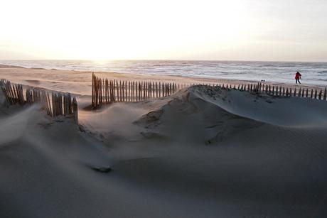strandleven..............